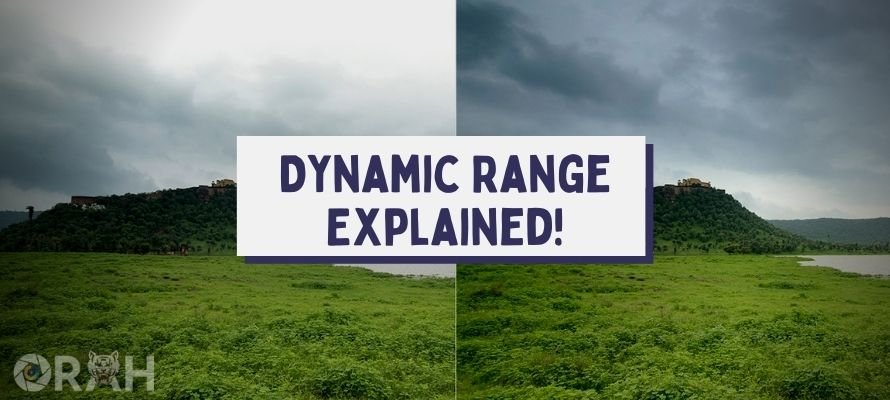 What Is Dynamic Range in Photography