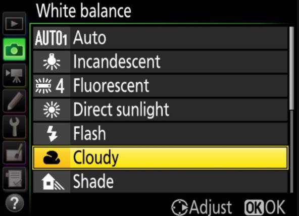 Cloudy Option in Nikon Camera