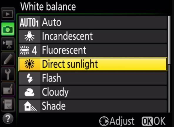 Direct Sunlight Option in Nikon Camera