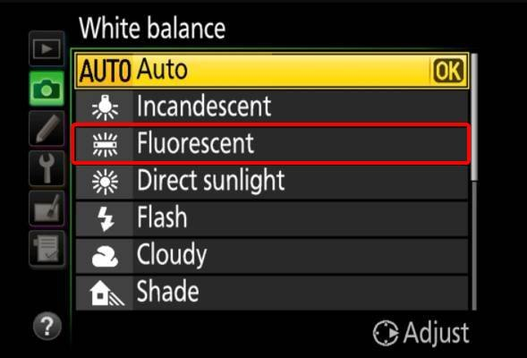 Image of Fluorescent Option in white balance