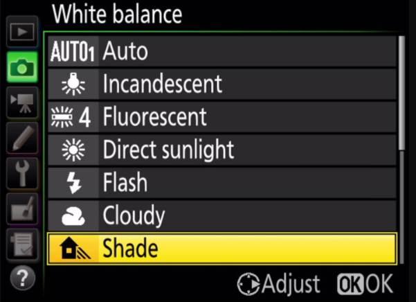 Shade Option in Nikon Camera