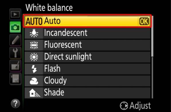 White Balance Auto Mode