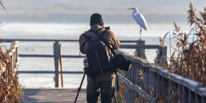image of person taking photo of a bird